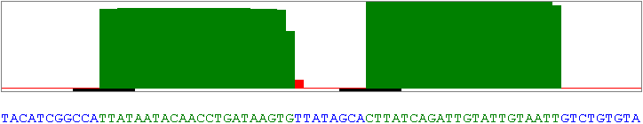 Nucleotide frequency of miR-374a of ago-1 IP libraries